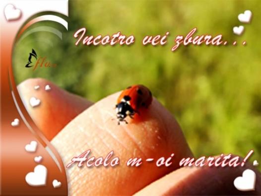 Felicitare - Gargarita - Felicitari Dragobete - Felicitari.flu.ro
