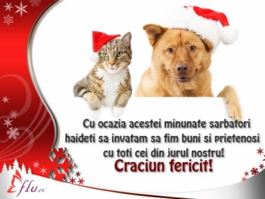 Felicitare - De Craciun, fii mai bun! - Felicitari Craciun - Felicitari.flu.ro
