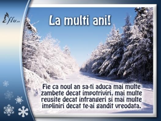Felicitare - Zambete, reusite, impliniri! - Felicitari Anul Nou - Felicitari.flu.ro