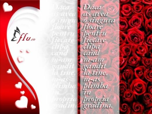 Felicitare - Gradina de trandafiri - Felicitari Ziua Indragostitilor - Felicitari.flu.ro