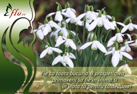 Felicitare - Ghiocei - Felicitari 1 Martie - Felicitari.flu.ro