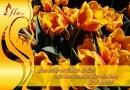 Felicitare Buchet de flori