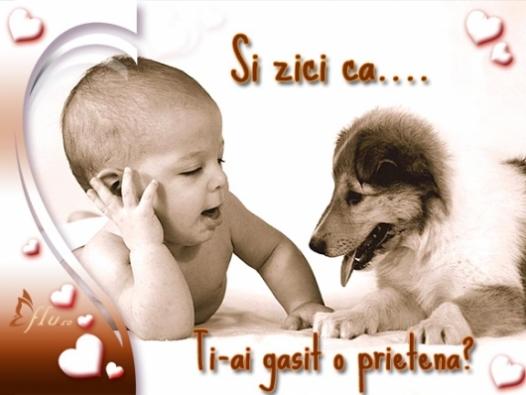 Felicitare - Ai prietena? - Felicitari Ziua Indragostitilor - Felicitari.flu.ro