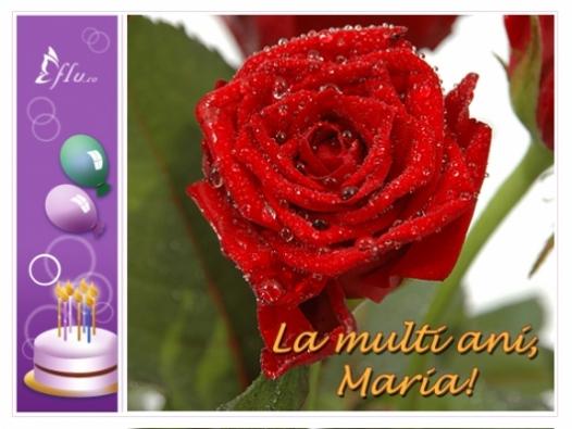 Felicitare - La multi ani, Maria! - Felicitari Zi Onomastica - Felicitari.flu.ro