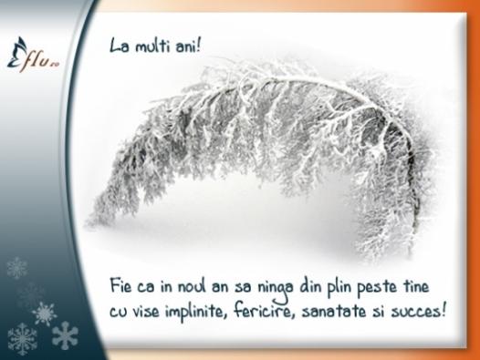 Felicitare - Sa ninga! - Felicitari Anul Nou - Felicitari.flu.ro