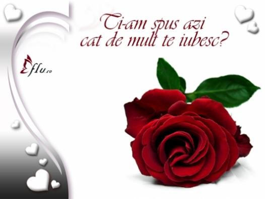 Felicitare - Cat de mult de iubesc - Felicitari Declaratii - Felicitari.flu.ro