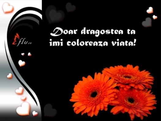 Felicitare - Imi colorezi viata - Felicitari Declaratii - Felicitari.flu.ro