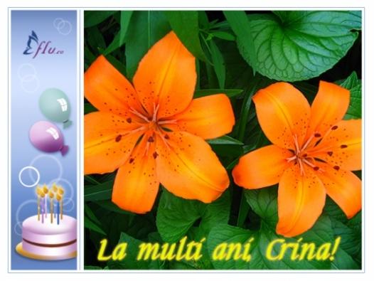 Felicitare - Crina - Felicitari Zi Onomastica - Felicitari.flu.ro