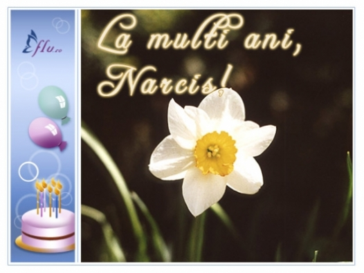 Felicitare - Narcis - Felicitari Zi Onomastica - Felicitari.flu.ro