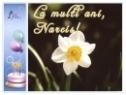 Felicitare Narcis