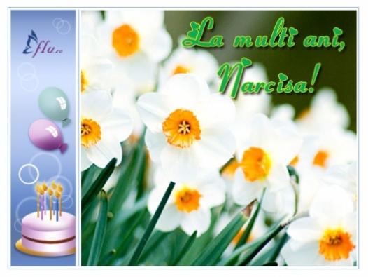 Felicitare - Narcisa - Felicitari Zi Onomastica - Felicitari.flu.ro