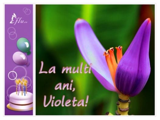 Felicitare - Violeta - Felicitari Zi Onomastica - Felicitari.flu.ro