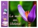 Felicitare Violeta