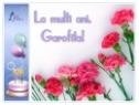 Felicitare Garofita