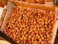 Alunele din soia reduc tensiunea arteriala si colesterolul rau