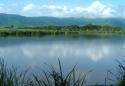 Pe marginea lacului